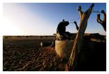 Mauritanie - Puiser la vie 33