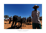 Madagascar - The Red Island 161