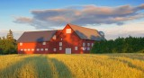 Red Barn At Sunset 16900