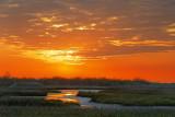 Wetlands Sunrise 20090116