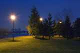 Park In First Light 10988