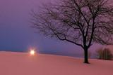 Snowscape At Dawn 12150
