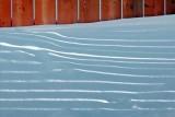 Fence Shadows 52530