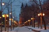MacKenzie Avenue Streetlights 13460