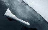Almonte 'Iceberg' 14069