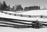 Split Rail Snowscape 14261