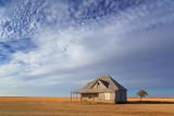 Texas High Plains 71712