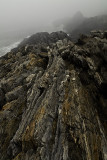 Harpswell Coast