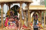 Temple festival in Chidambaram, Tamil Nadu.