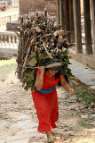 Carrying firewood in Bandipur, Nepal.