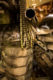Predator Alien - Dubai 2