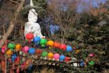 Bouddha et lanternes