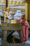 Yangon - La pagode de Shwedagon