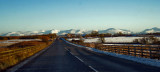 winter 2010.jpg