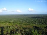 View from escarpment near Chan Chich