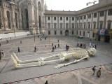 MILANO_3969.jpg