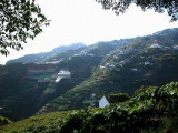 Madeira2003-112.jpg