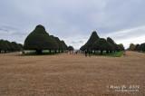 Hampton Court D300_19429 copy.jpg