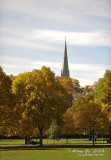 Kensington D700_05386 copy.jpg