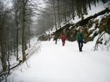 GR5 Wandeling Thann - Les Allies (van de Vogezen richting de Jura) in 2008