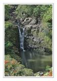 hawaii_2009