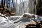 Moore Cove Falls 5