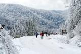 Blue Ridge Parkway Snow 2