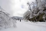 Blue Ridge Parkway Snow 3
