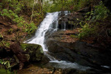 March 13 - waterfalls in Poplar Hollow, SC