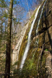 Chestnut Ridge Heritage Preserve 5