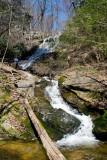 Chestnut Ridge Heritage Preserve 9
