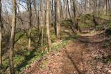 Chestnut Ridge Heritage Preserve 11