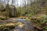 Chestnut Ridge Heritage Preserve 17