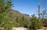 Rumbling Bald Mountain 8