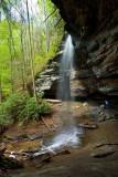 Moore Cove Falls 10
