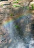 Moore Cove Falls 11