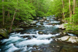 Big Creek - GSMNP 2