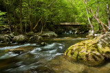 Big Creek - GSMNP 4