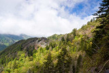 Alum Cave Trail 7
