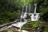 Virginia Hawkins Falls 1