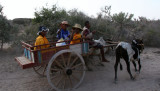 We met lots of people in zebu carts on the road from Anakao to Tsimanampetsotsa. Many of the women had interesting hats.