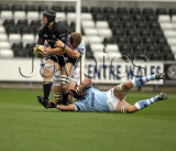 Ospreys v Leicester2.jpg