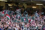 CardiffBlues v Leicester23.jpg