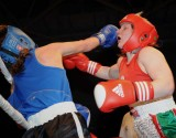 Welsh aba Boxing Champs1.jpg