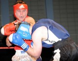 Welsh aba Boxing Champs19.jpg