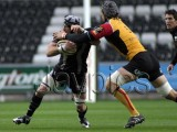 Ospreys v Dragons2.jpg