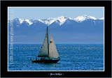 Boats_0411-copy-b.jpg