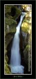 YN6Y4136-copy-b.jpg