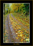 Autumn_0128-copy-b.jpg