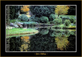 Autumn_0047-copy-b.jpg